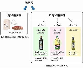 脂肪酸種類.jpg