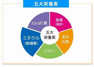 五大栄養素.jpg